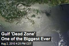 Gulf 'Dead Zone' One of the Biggest Ever