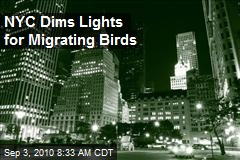 NYC Dims Lights for Migrating Birds