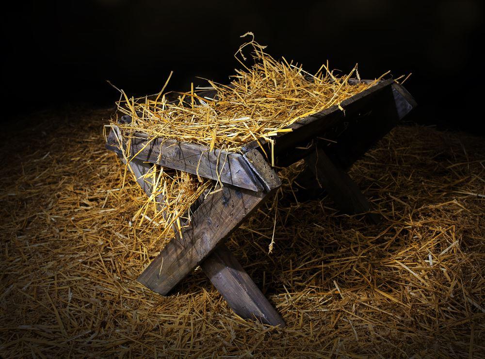 Real Newborn Left in Church Nativity Scene