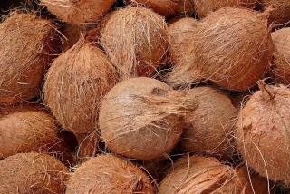 Border Agents Find 1.4K Pounds of Pot Inside Coconuts