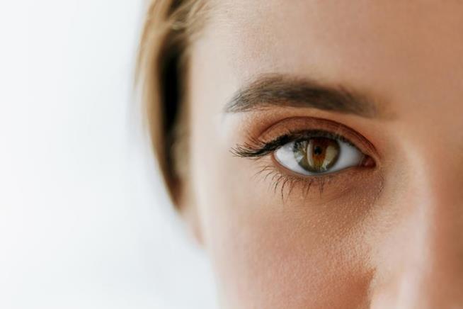 Landmark gene-editing work may help restore vision