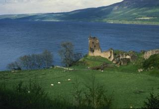 Scientists to Unveil 'Plausible' Theory for Loch Ness Monster