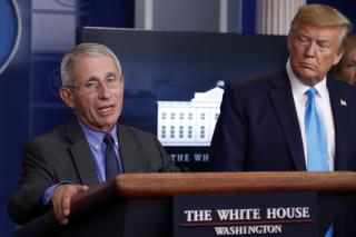 White House Says Fauci's Job Is Safe