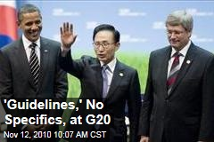 'Guidelines,' No Specifics, at G20