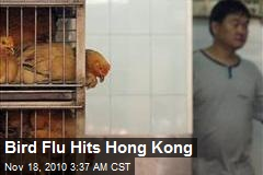 Bird Flu Hits Hong Kong
