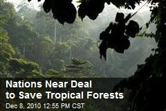 Nations Near Deal to Save Tropical Forests