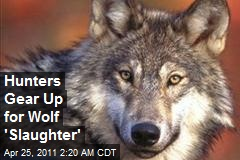 Hunters Gear Up for Wolf 'Slaughter'