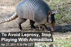 Armadillos Can Spread Leprosy to Humans