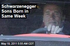 Arnold Schwarzenegger Sons Born Days Apart
