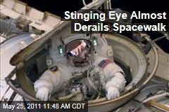 Spacewalking Astronaut Andrew Feustel Gets 'Something' in Eye