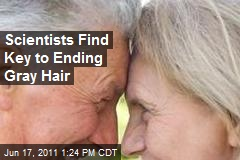 Scientists Find Key to Ending Gray Hair