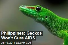Philippines: Geckos Won't Cure AIDS