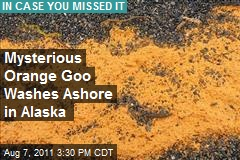 Mysterious Orange Goo Washes Ashore in Alaska