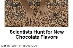 Scientists Hunt for New Chocolate Flavors