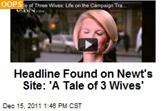Headline Found on Newt's Site: 'A Tale of 3 Wives'