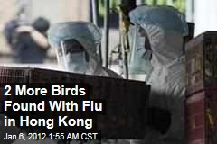 2 More Birds Had H5N1 Flu in Hong Kong