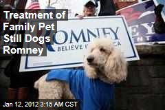 Treatment of Family Dog Seamus Dogs Mitt Romney