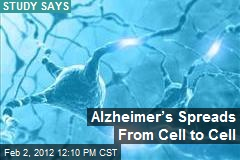 Alzheimer's Spreads From Cell to Cell