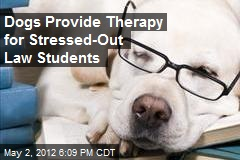 Dogs Provide Therapy for Stressed-Out Law Students
