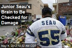 Junior Seau's Brain to Be Checked for Damage