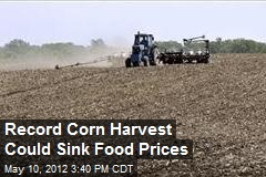 Record Corn Harvest Could Sink Food Prices