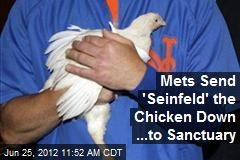 Mets Send 'Seinfeld' the Chicken Down ...to Sanctuary