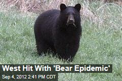 West Hit With 'Bear Epidemic'