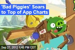 'Bad Piggies' Soars to Top of App Charts