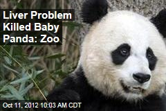 Liver Problem Killed Baby Panda: Zoo