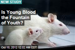 Is Young Blood the Fountain of Youth?
