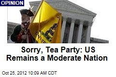 Sorry, Tea Party: US Remains a Moderate Nation