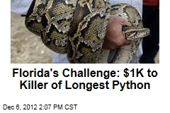 Florida's Challenge: $1K to Killer of Longest Python