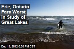 Erie, Ontario Fare Worst in Study of Great Lakes