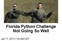 Florida Python Challenge Not Going So Well