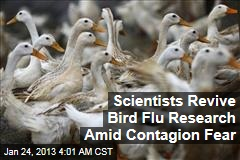 Bird Flu Research Returning Amid Contagion Fears