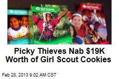 Picky Thieves Nab $19K Worth of Girl Scout Cookies