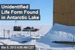 Unidentified DNA Found in Antarctic Lake