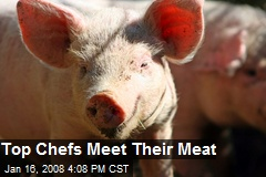 Top Chefs Meet Their Meat