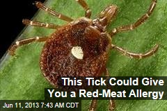 This Tick Could Give You a Red-Meat Allergy