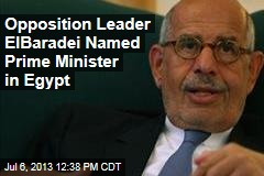 Opposition Leader ElBaradei Named Prime Minister in Egypt
