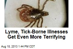 Lyme, Tick-Borne Illnesses Get Even More Terrifying