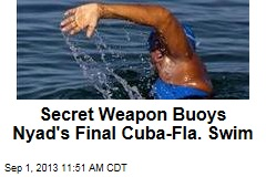 Secret Weapon Buoys Nyad's Final Cuba-Fla. Swim