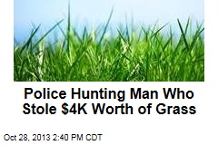 Police Hunting Man Who Stole $4K Worth of Grass