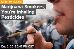 Marijuana Smokers, You're Inhaling Pesticides