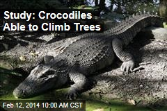 Study: Crocodiles are able to climb trees