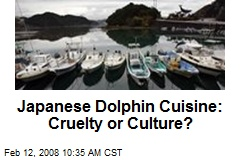 Japanese Dolphin Cuisine: Cruelty or Culture?