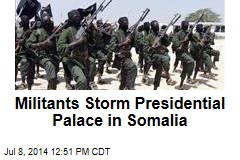 Militants Storm Presidential Palace in Somalia