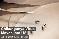 Chikungunya Virus Moves Into US