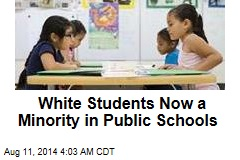 White Students Now a Minority in Public Schools