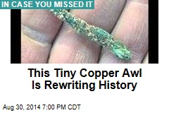 This Tiny Copper Awl Is Rewriting History